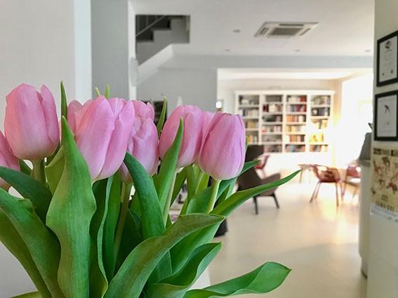 Petit Hotel a Lido di Camaiore tulipani