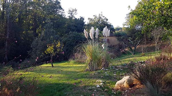 La-Cerreta-Sassetta-giardino